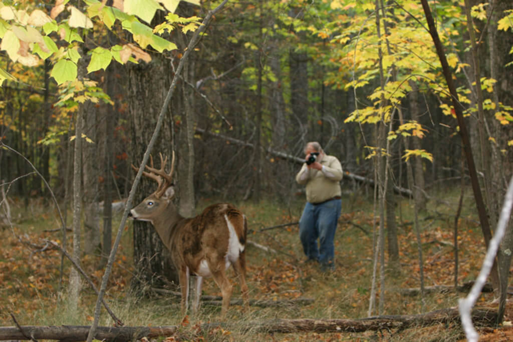 Richard P. Smith filming a 9-point whitetail buck.