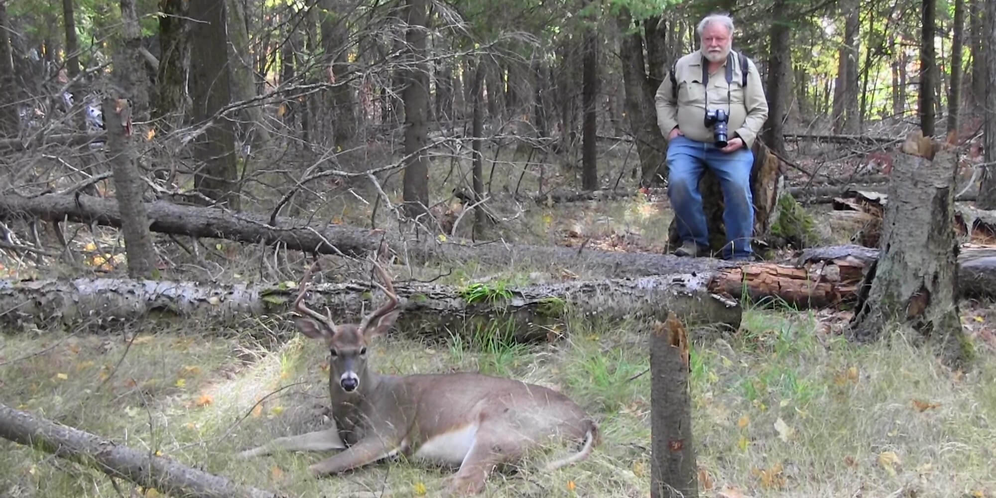 Sitting With 7-pointer